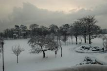 Snow scene in trentham