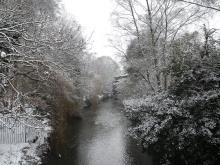 Canal in the winter