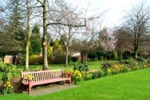 Selly park Garden in Spring